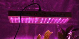 Подсветка для домашних растений